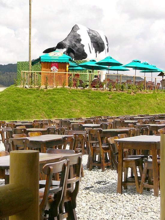La bovino rigardita el apuda restoracio kie ni tagmanĝis.